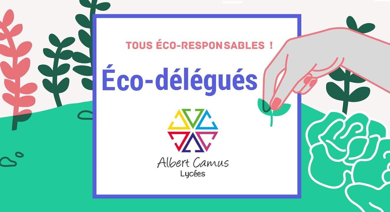 eco délégués.png